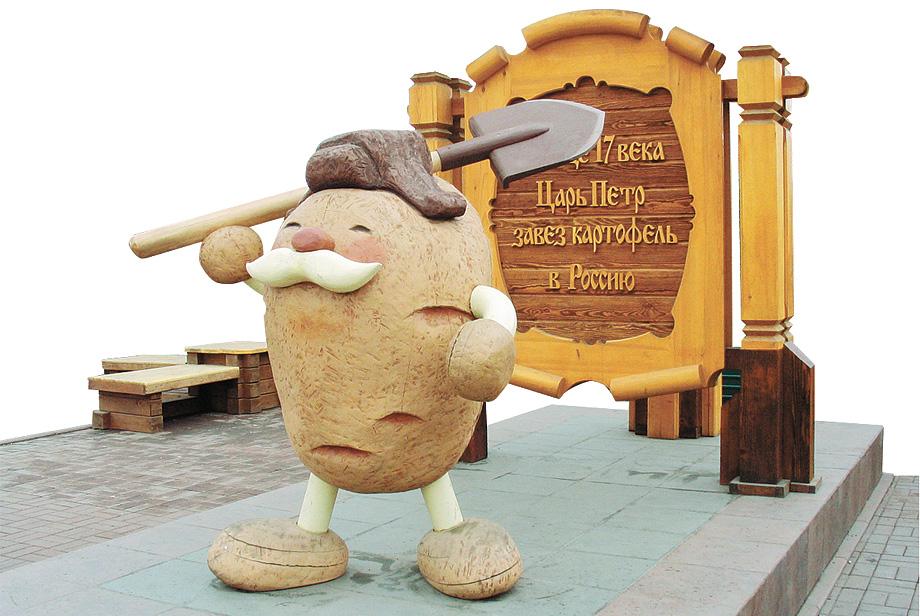 579-картошка-1