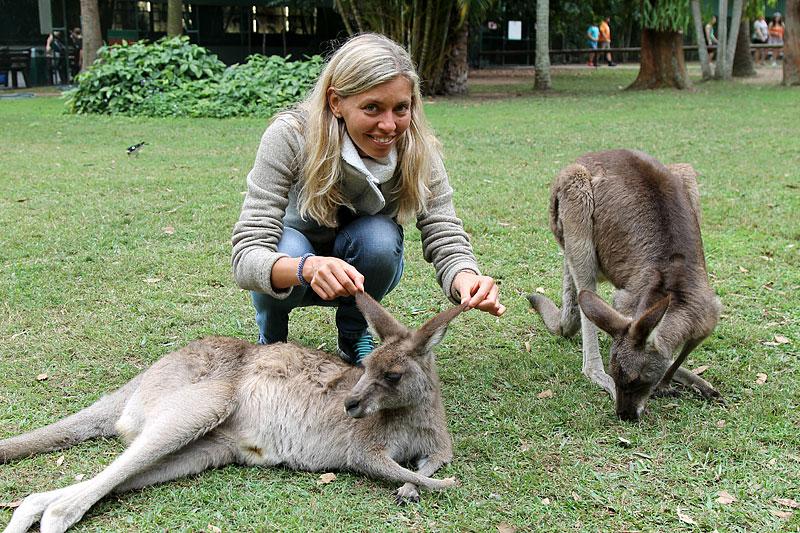 2015-zoo-kenguru-1